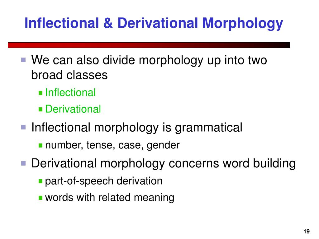 Inflectional & Derivational Morphology