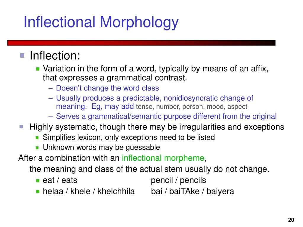Inflectional Morphology