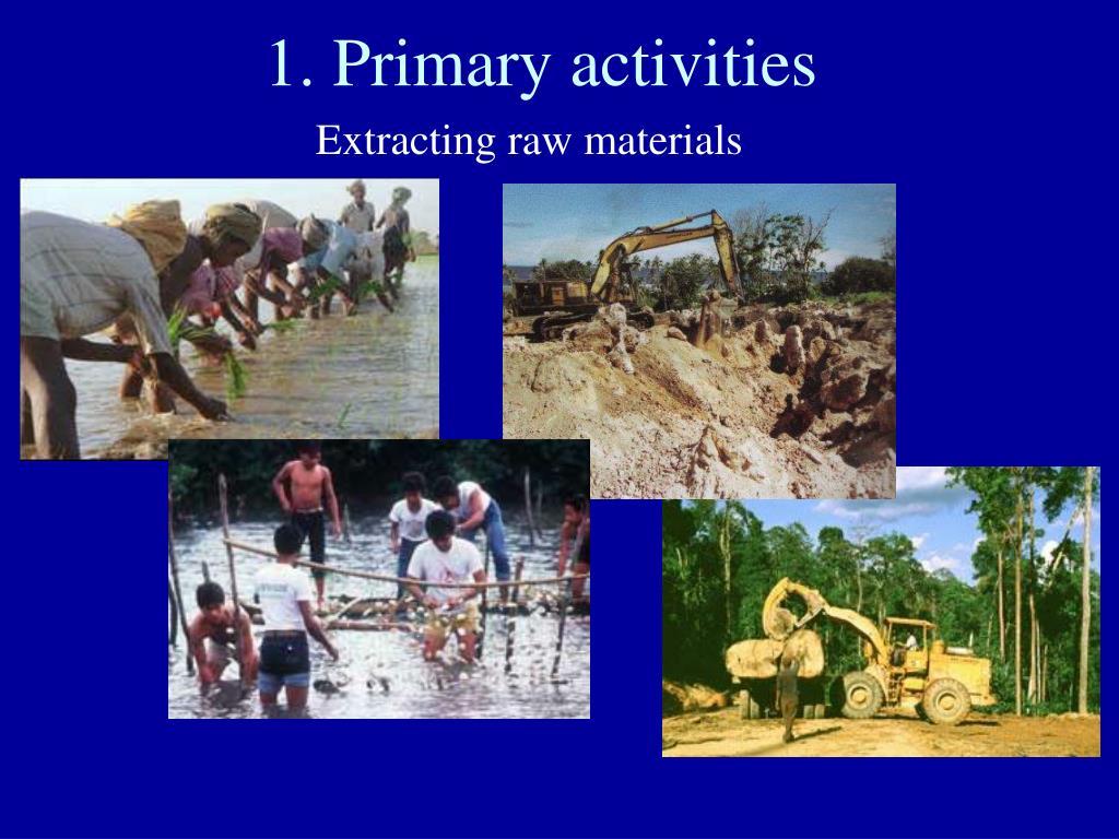 1. Primary activities
