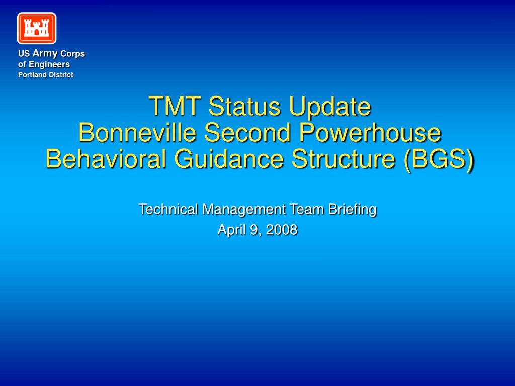 TMT Status Update