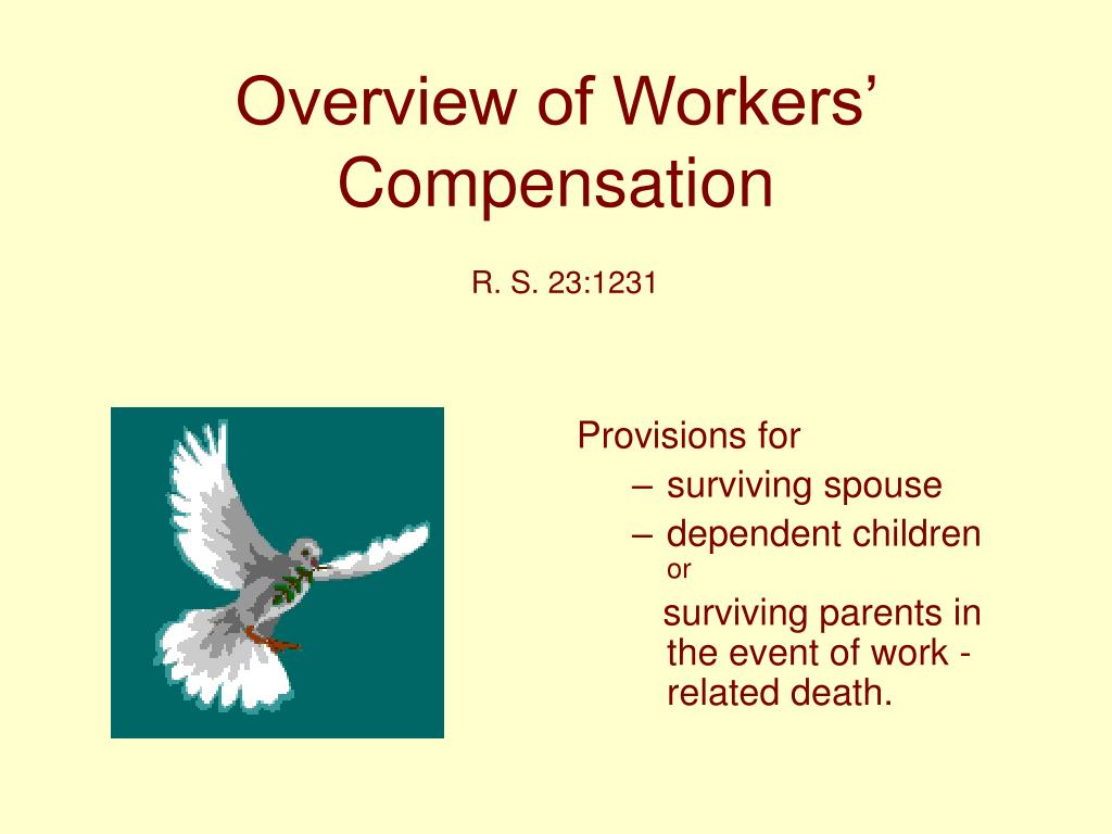 Overview of Workers' Compensation
