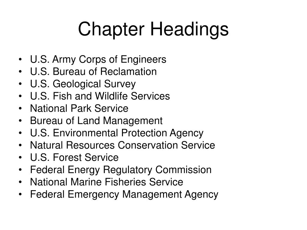 Chapter Headings