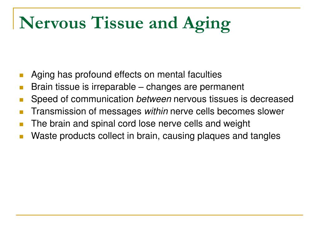 Nervous Tissue and Aging