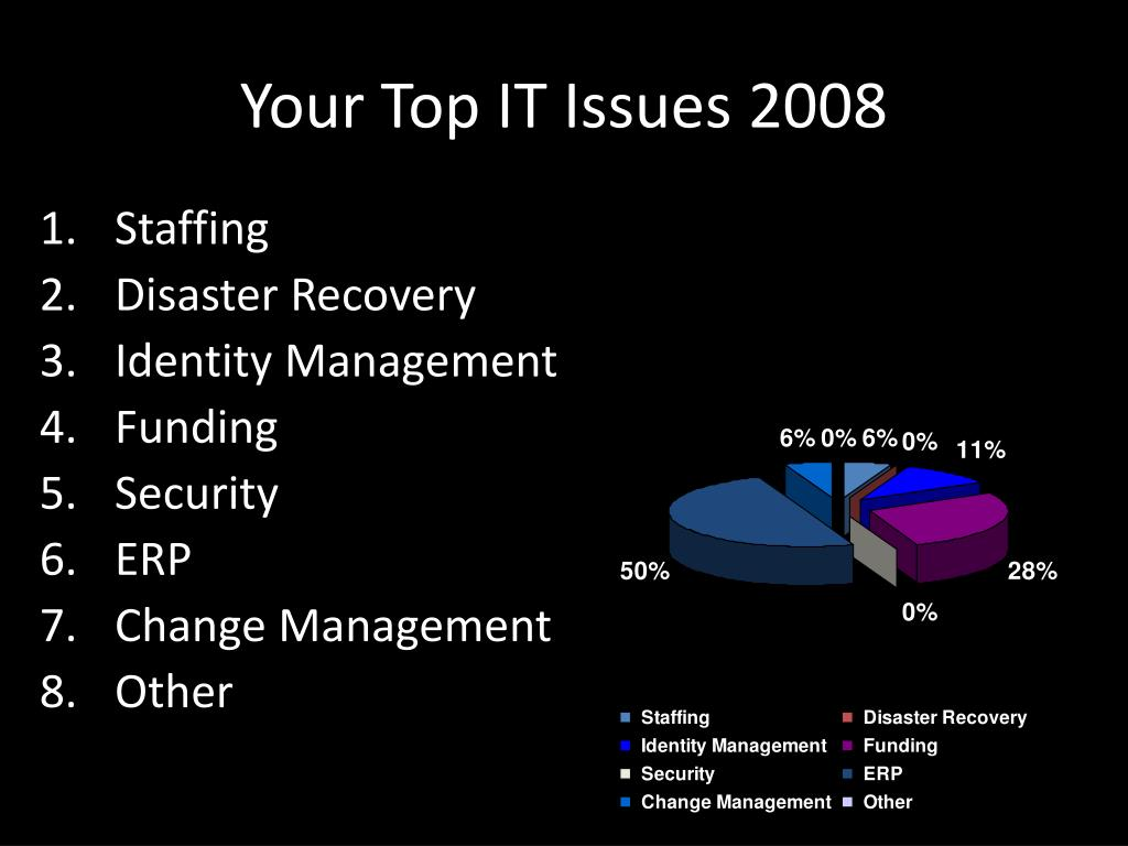 Your Top IT Issues 2008