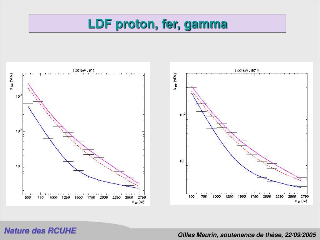 LDF proton, fer, gamma