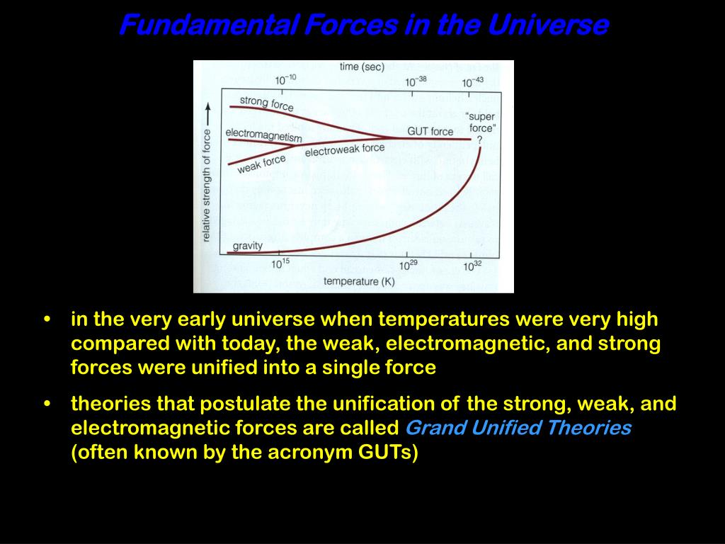 Fundamental Forces in the Universe
