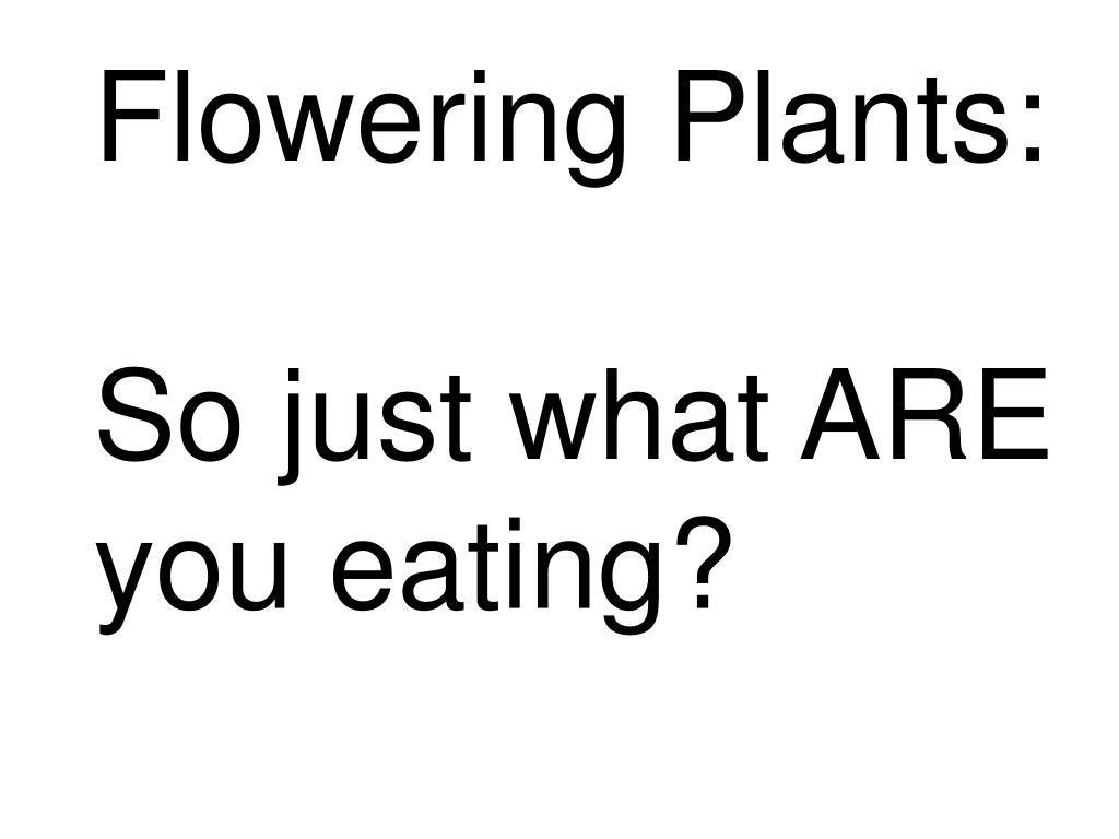 Flowering Plants: