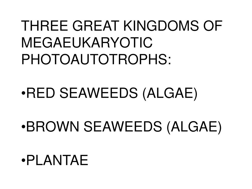 THREE GREAT KINGDOMS OF MEGAEUKARYOTIC PHOTOAUTOTROPHS:
