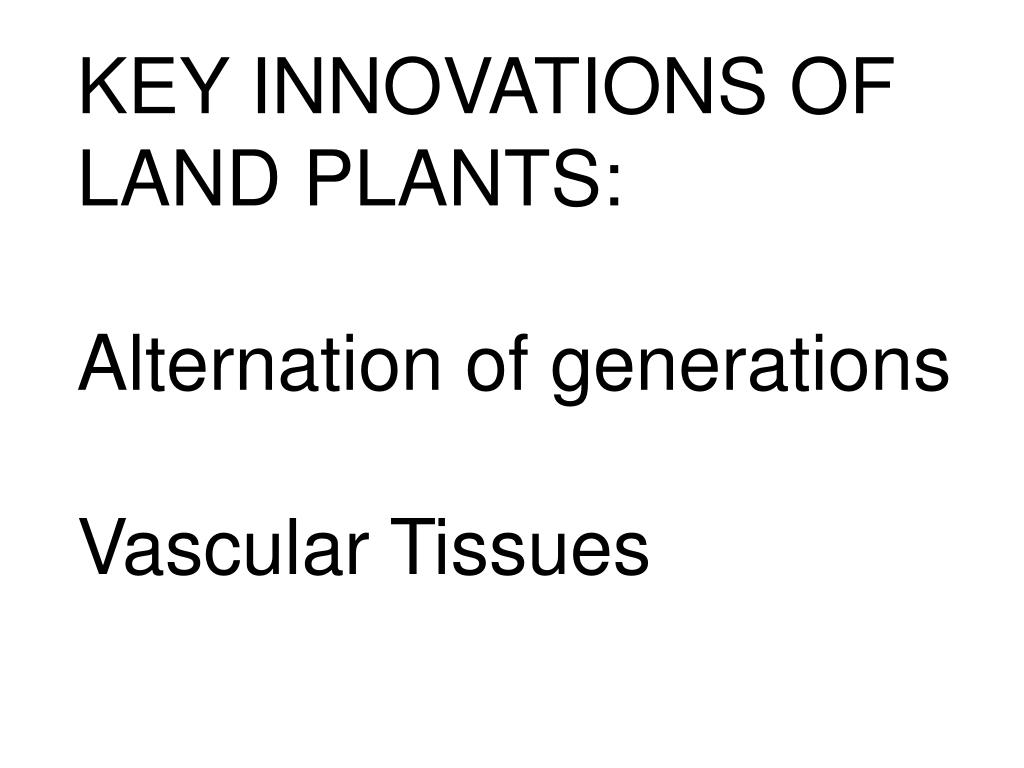 KEY INNOVATIONS OF LAND PLANTS: