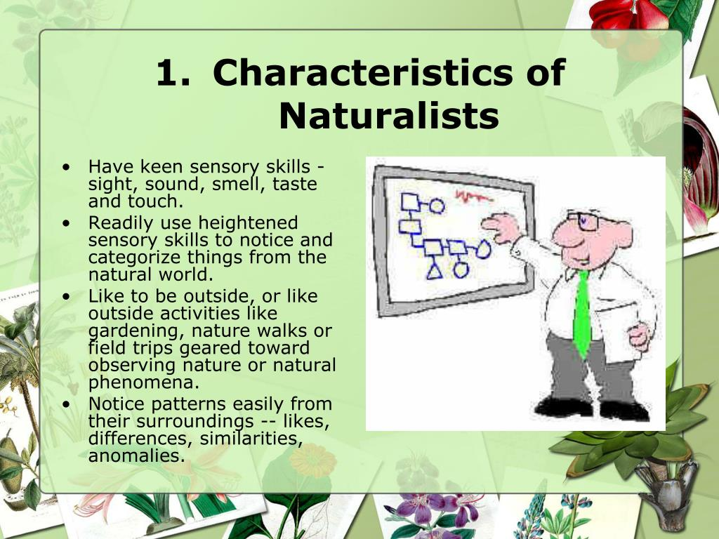 Characteristics of Naturalists