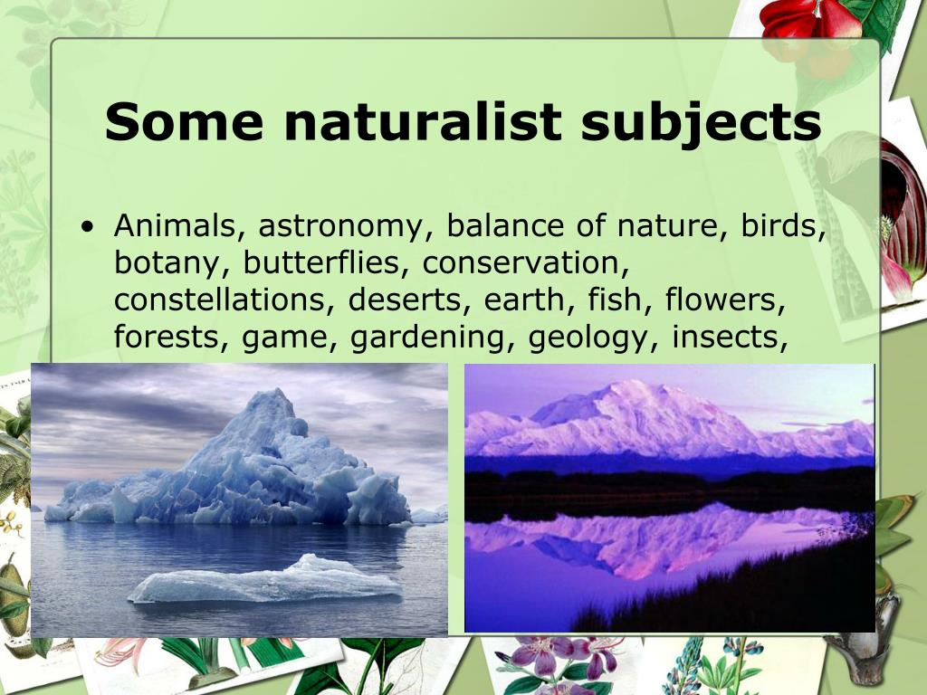 Some naturalist subjects