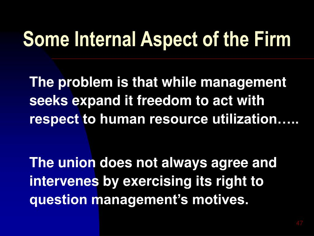 Some Internal Aspect of the Firm