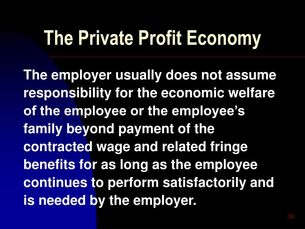 The Private Profit Economy