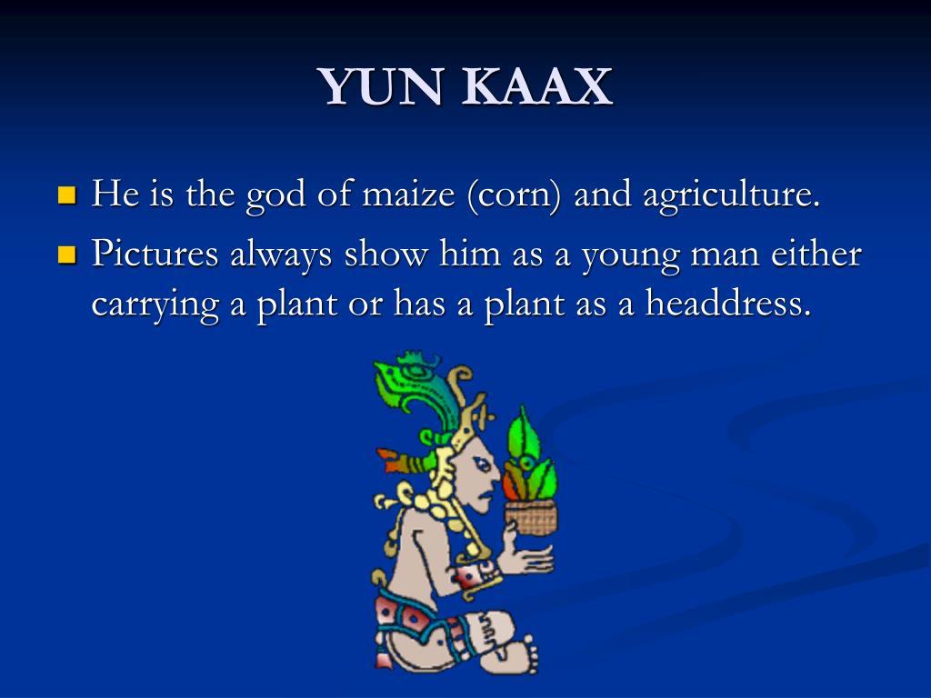 YUN KAAX