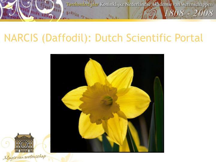 NARCIS (Daffodil): Dutch Scientific Portal