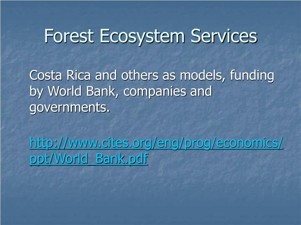 Forest Ecosystem Services