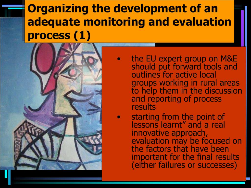 Organizing the development of an adequate monitoring and evaluation process (1)