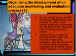 organizing the development of an adequate monitoring and evaluation process 1
