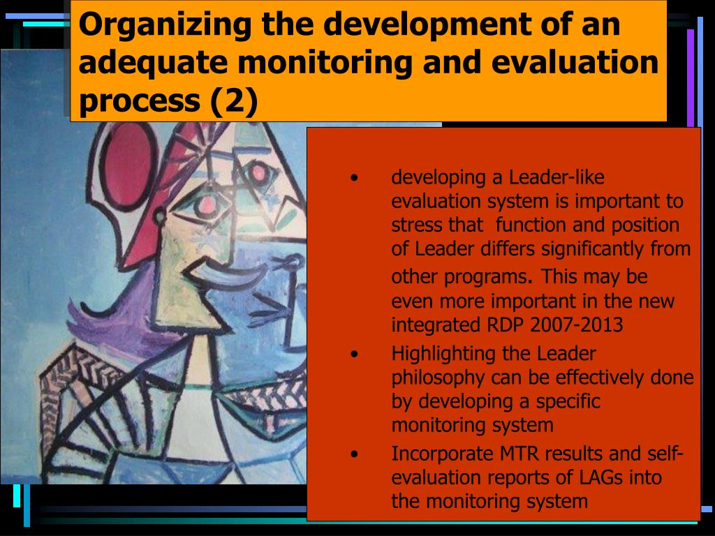 Organizing the development of an adequate monitoring and evaluation process (2)