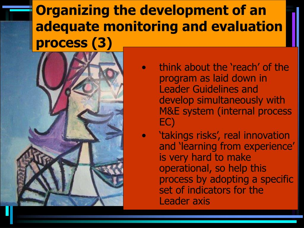 Organizing the development of an adequate monitoring and evaluation process (3)