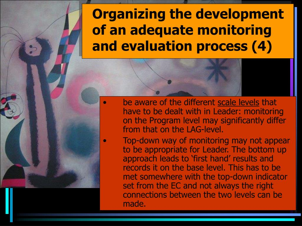 Organizing the development of an adequate monitoring and evaluation process (4)