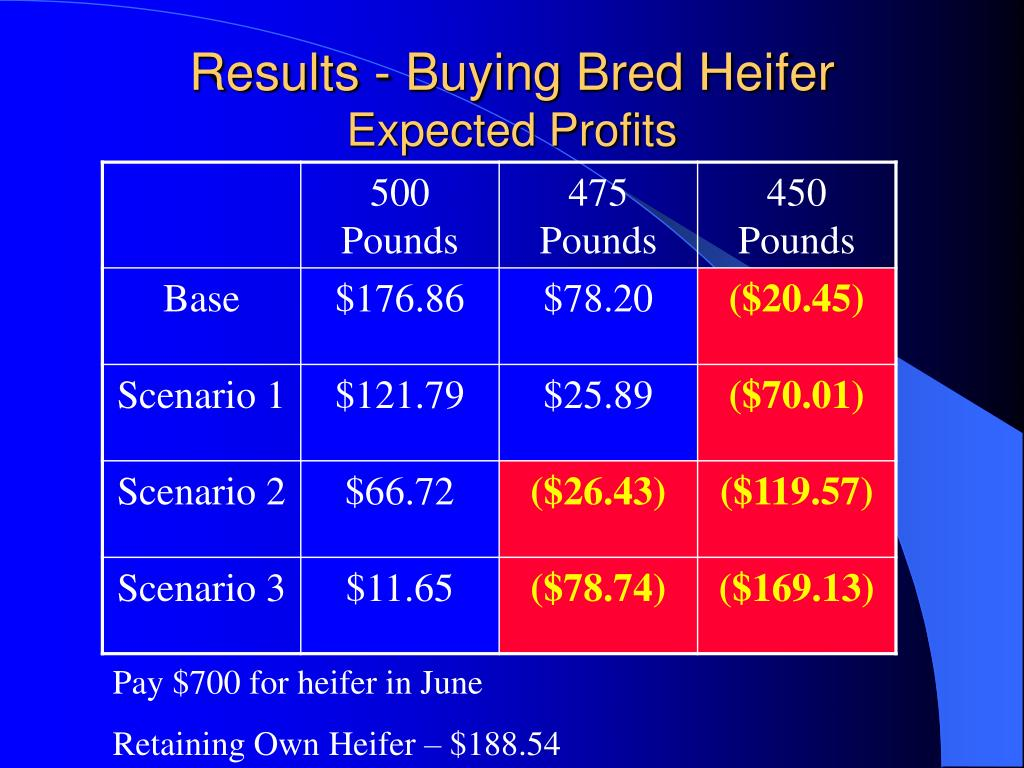 Results - Buying Bred Heifer