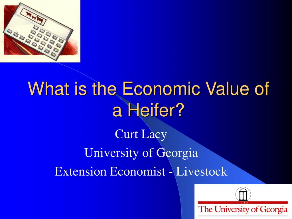 What is the Economic Value of a Heifer?
