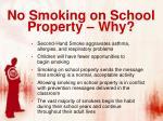 no smoking on school property why