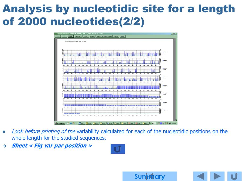 Analysis by nucleotidic site for a length of 2000 nucleotides(2/2)