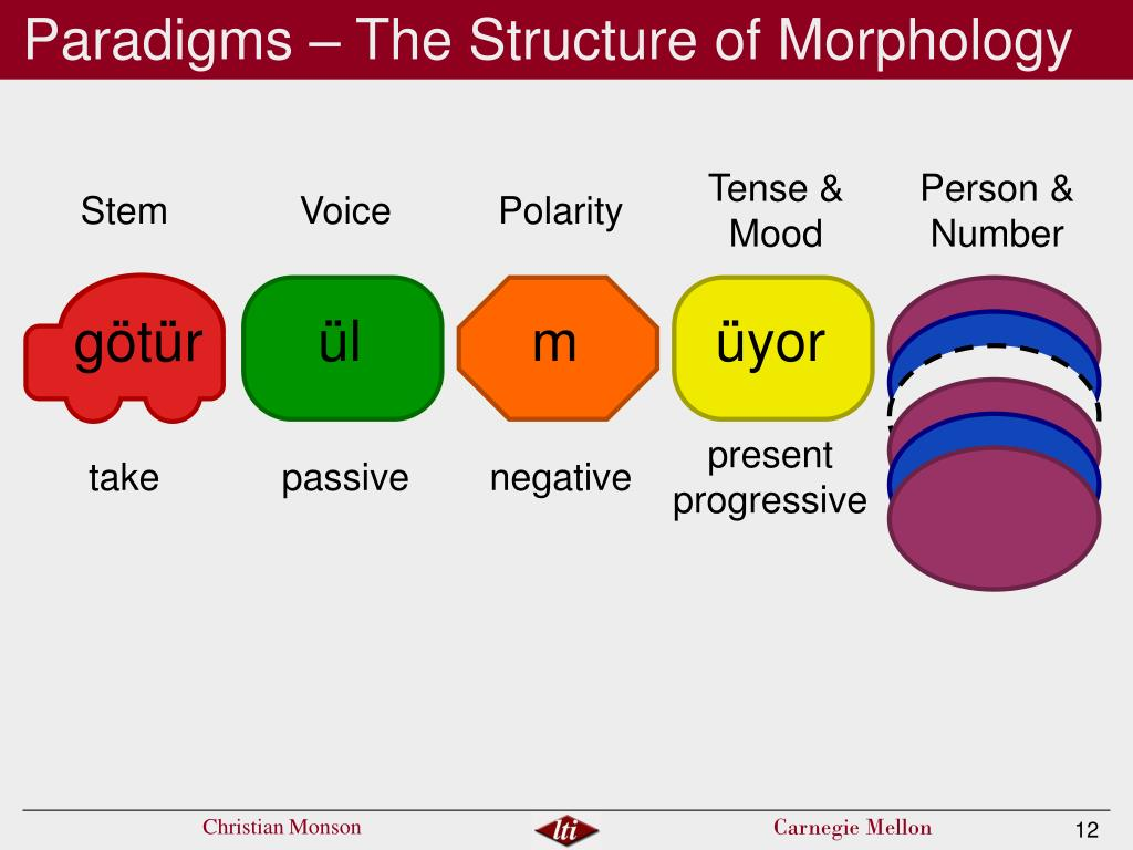 Paradigms – The Structure of Morphology