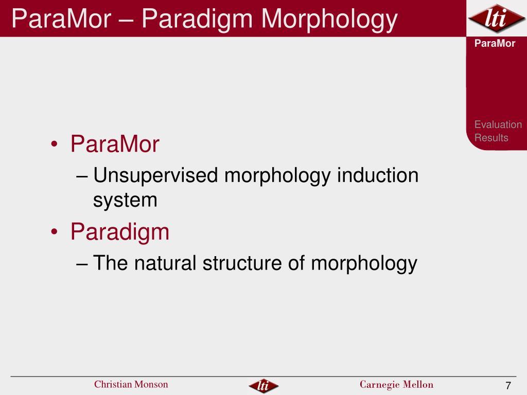 ParaMor – Paradigm Morphology