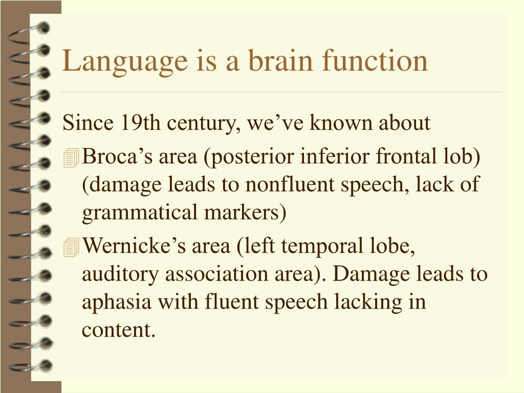 Language is a brain function