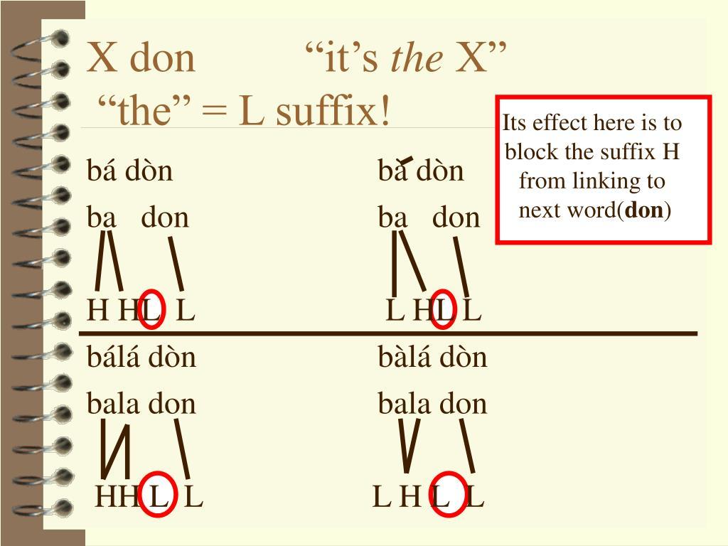 "X don ""it's"