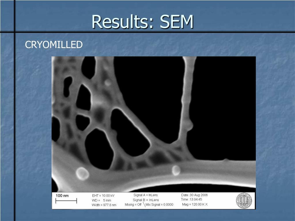 Results: SEM