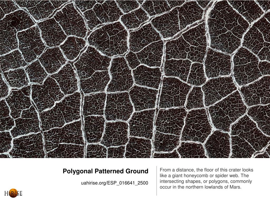 Polygonal Patterned Ground
