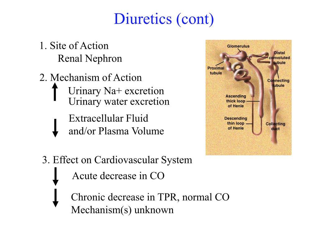 Diuretics (cont)