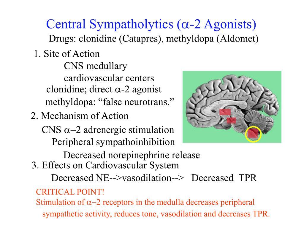Central Sympatholytics (