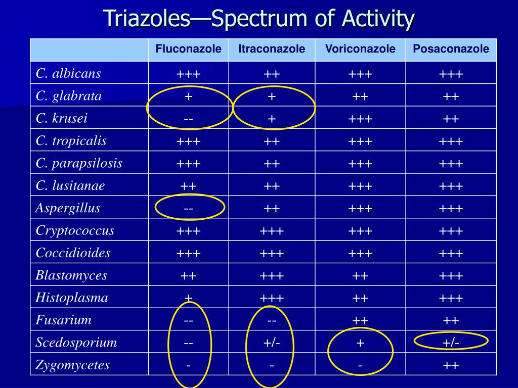 Triazoles—Spectrum of Activity