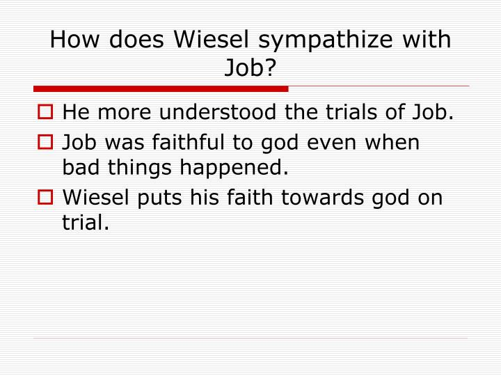 How does Wiesel sympathize with Job?