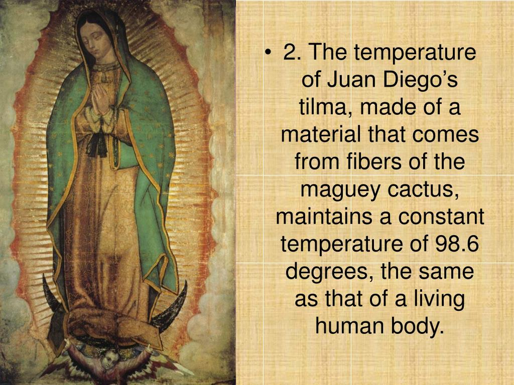 2. The temperature of Juan Diego's tilma, made of a material that comes from fibers of the maguey cactus, maintains a constant temperature of 98.6 degrees, the same as that of a living human body.