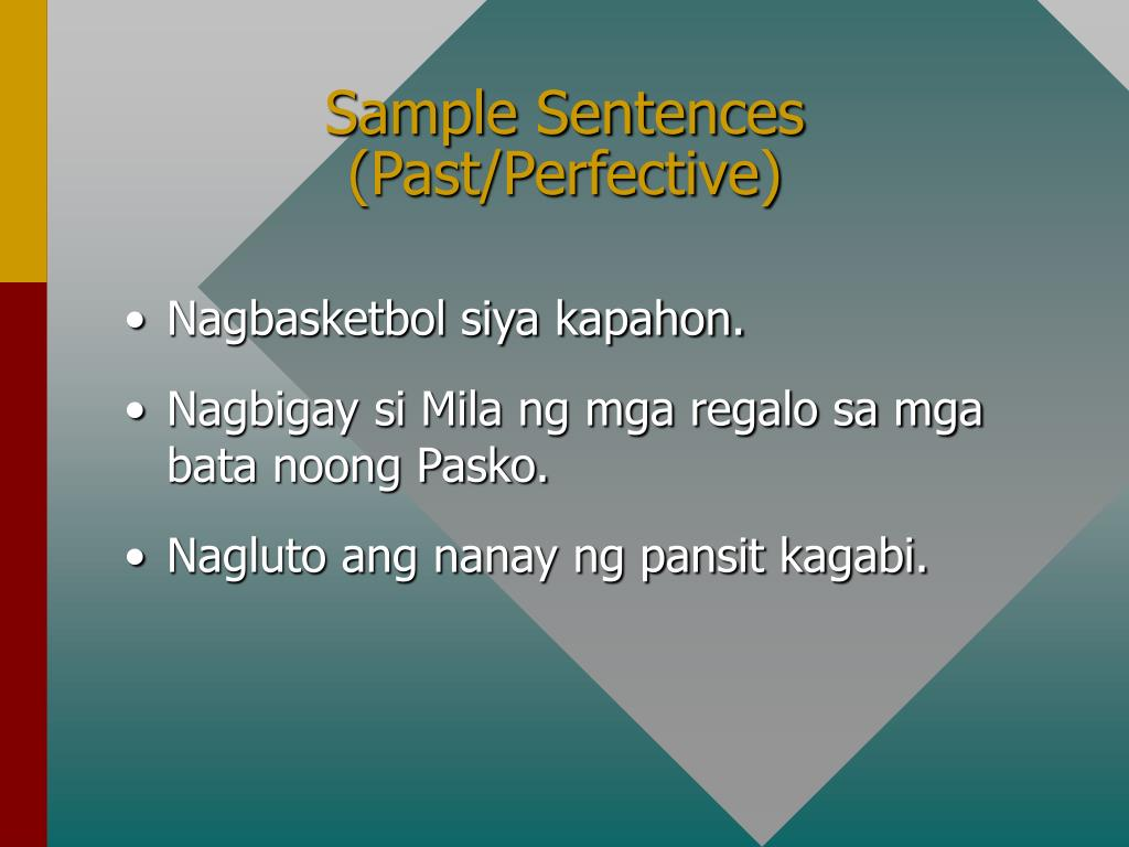Sample Sentences (Past/Perfective)
