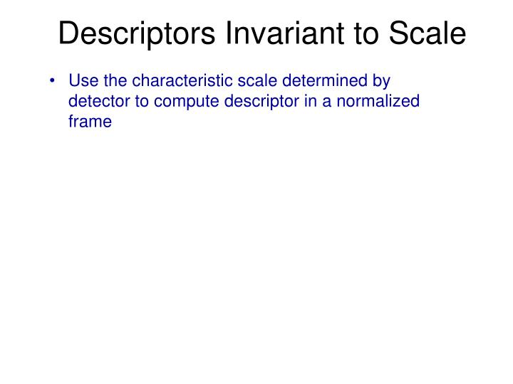 Descriptors Invariant to Scale