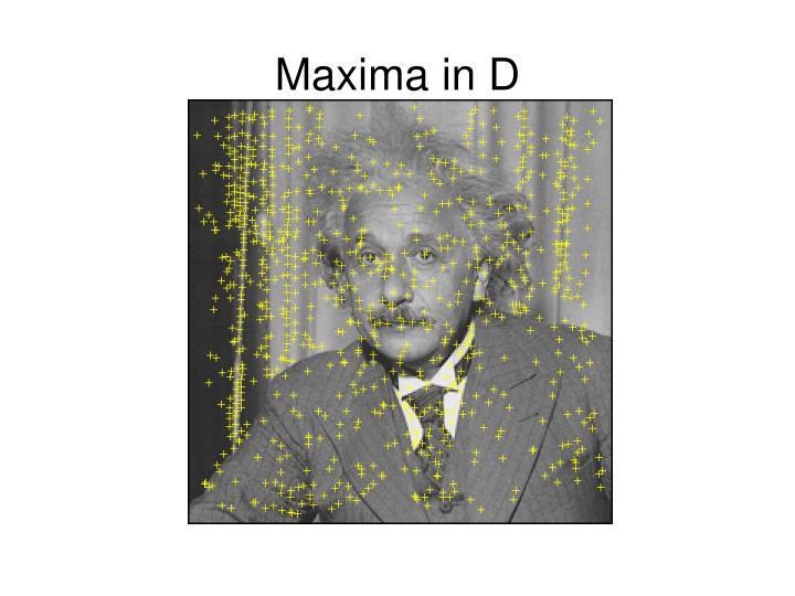 Maxima in D
