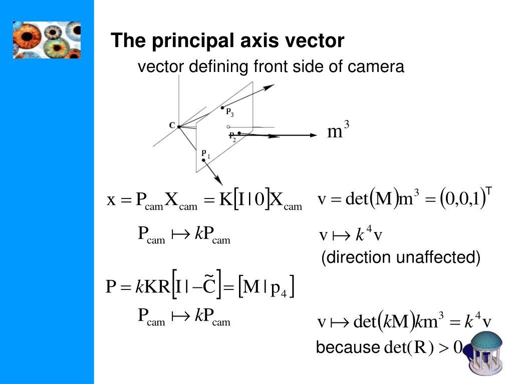 The principal axis vector