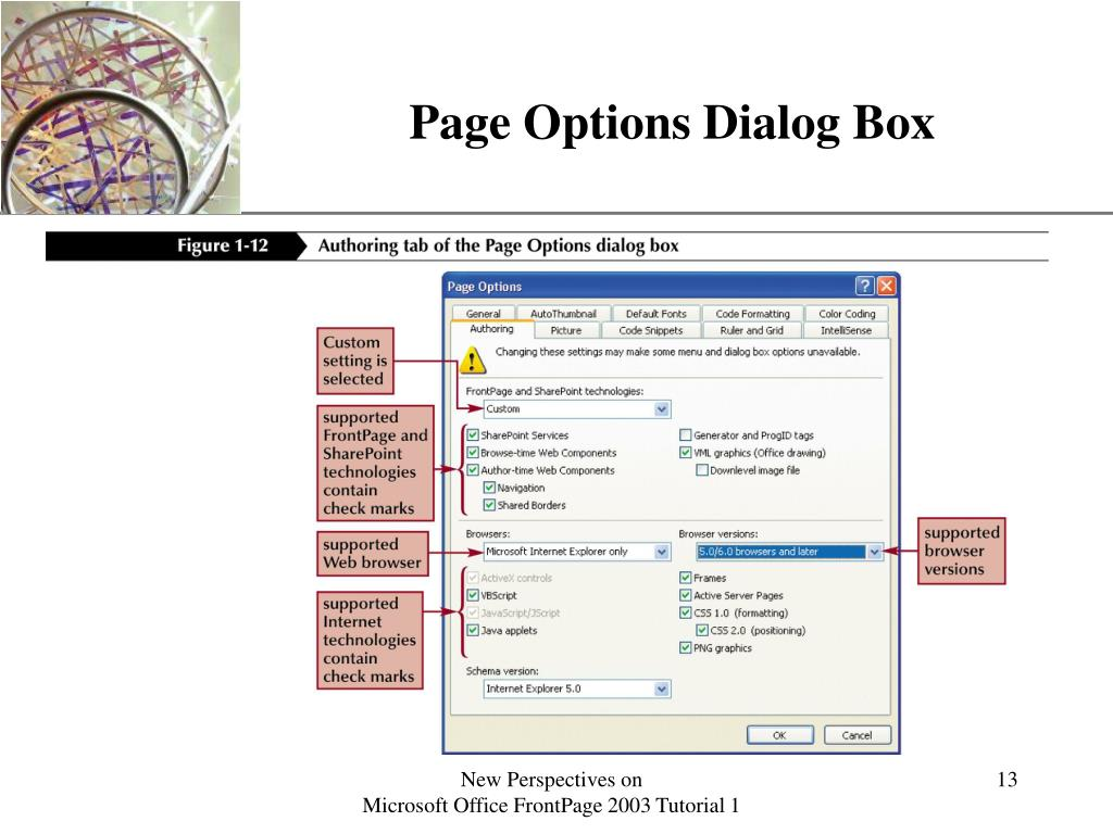Page Options Dialog Box