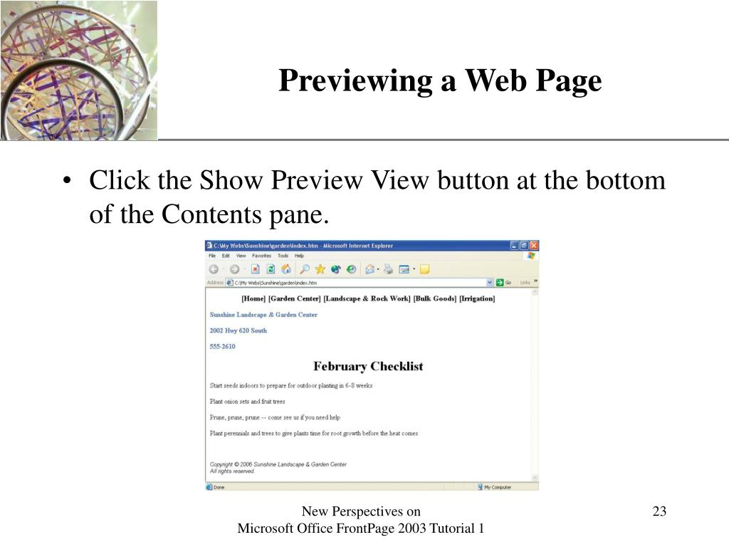 Previewing a Web Page