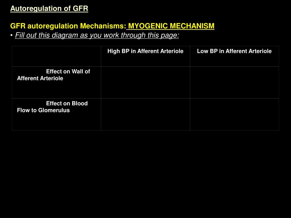 High BP in Afferent Arteriole