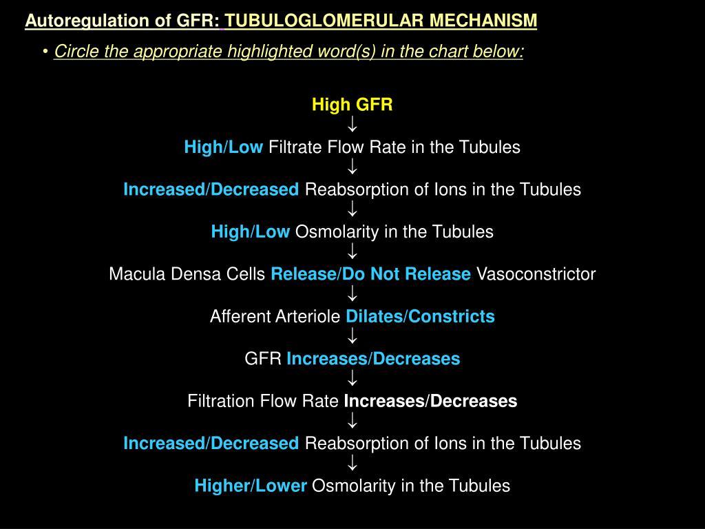 Autoregulation of GFR: