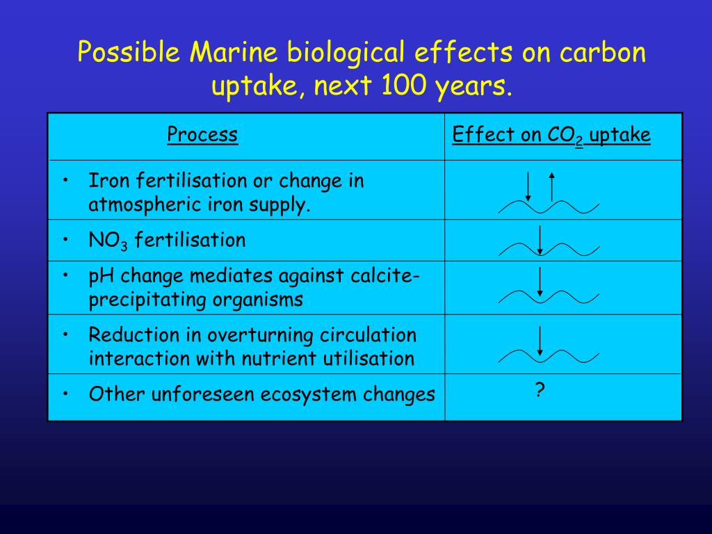 Possible Marine biological effects on carbon uptake, next 100 years.