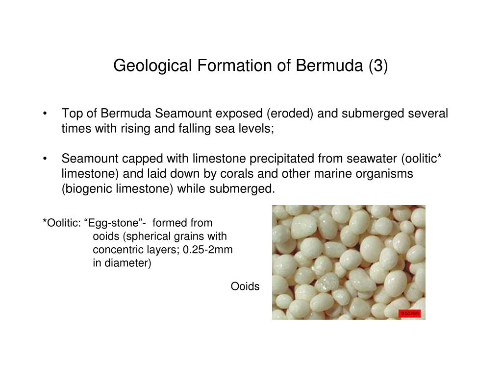 Geological Formation of Bermuda (3)